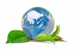 vospitanie-ekologicheskoj-kultury